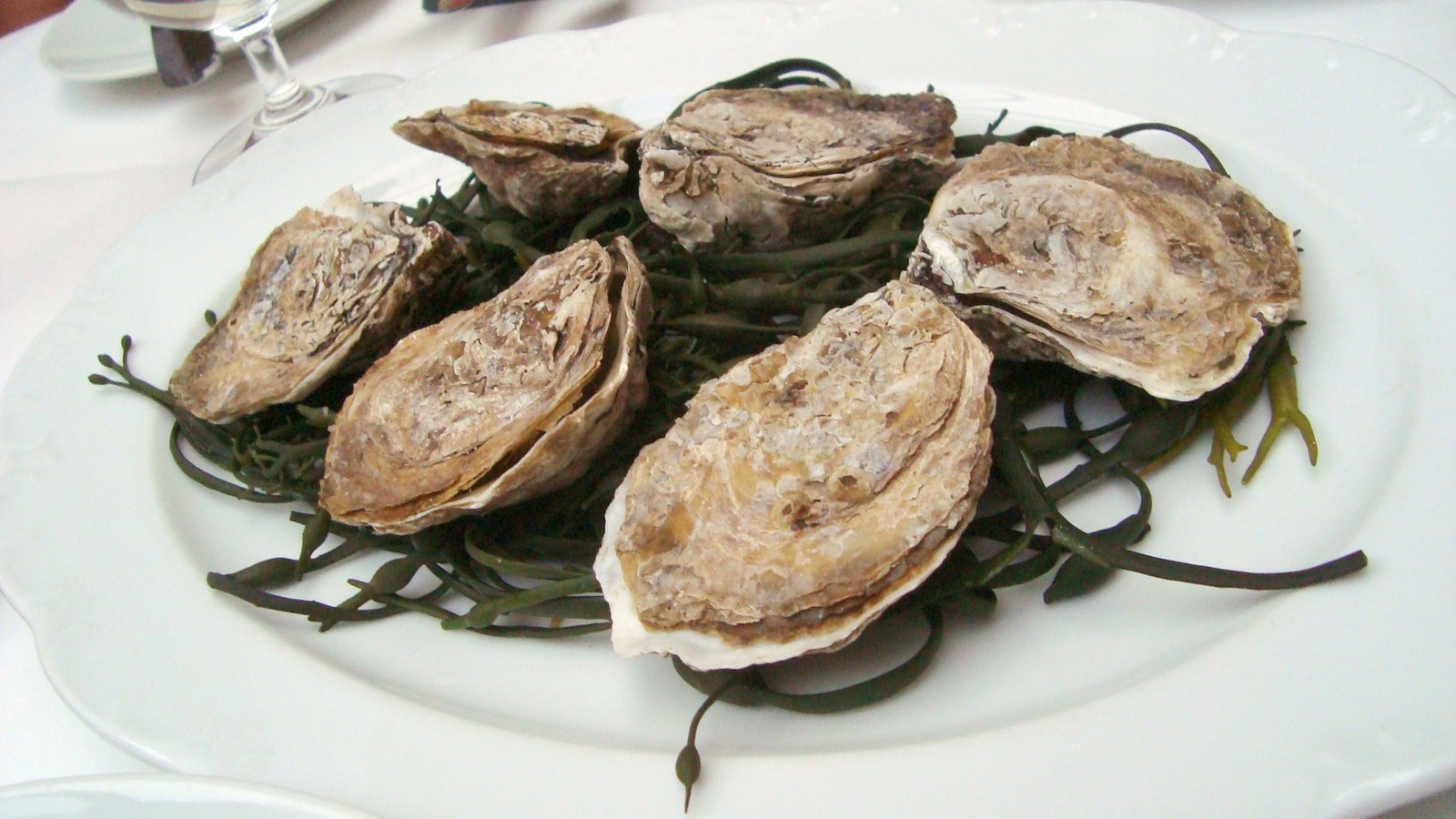 "Wood- Fired ""Island Creek"" Oysters with Lemon Thyme- Shallot Butter"